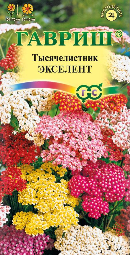 Комнатный цветок Спатифиллум (женское счастье уход в)