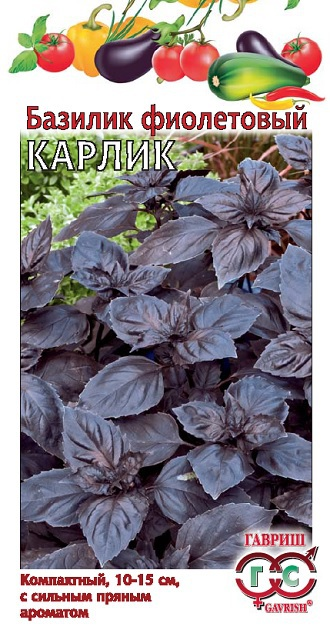 Базилик Карлик, фиолетовый 0,3