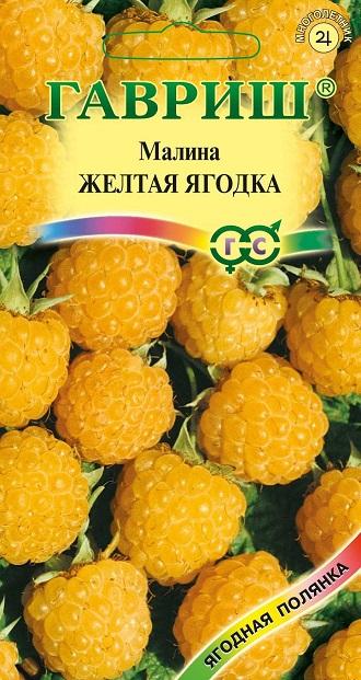 Малина Желтая ягодка 10 шт. Н13 - «ООО ДС Гавриш»
