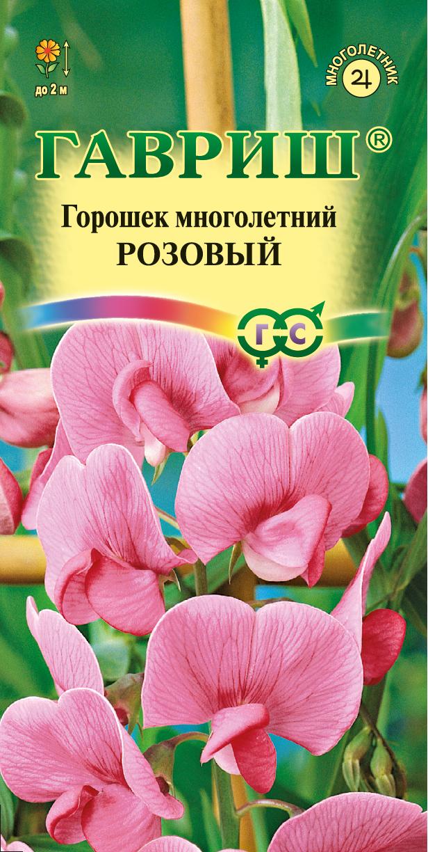 горошек многолетний розовый